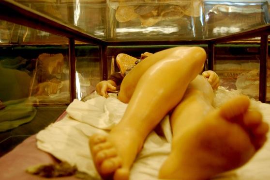 Музей Анатомии во Флоренции