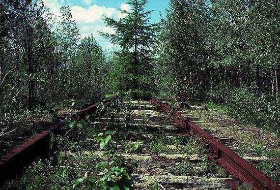 Заброшенная железная дорога