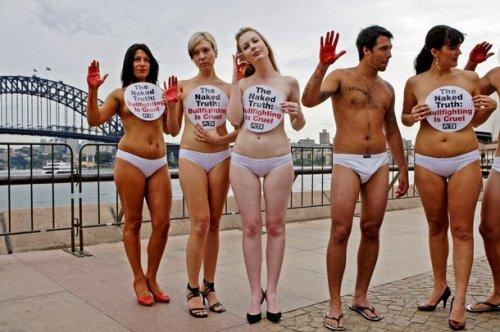 Голый протест PETA