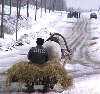 http://www.doodoo.ru/uploads/posts/2008-12/funnyfoto-065.jpg