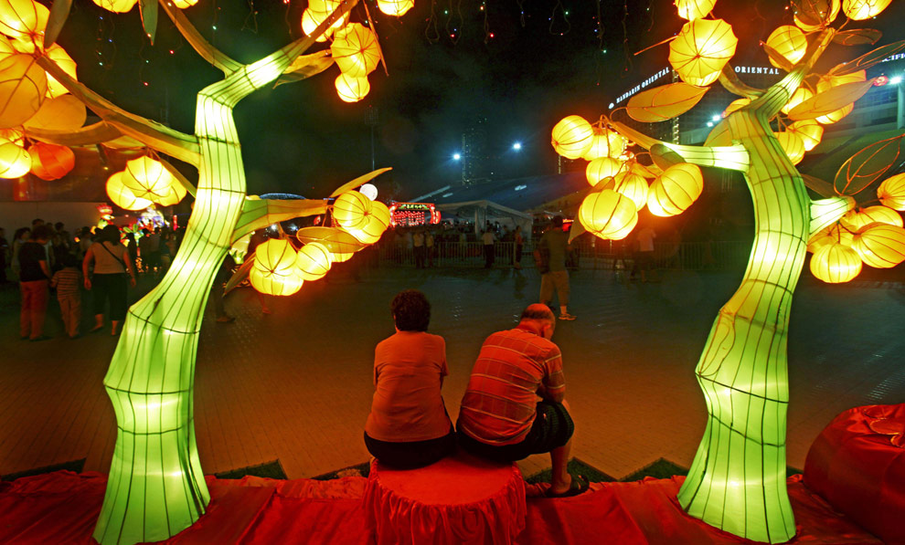 Празднование китайского нового года - года деревянной козы, grey roots museum and archives, музеи, новый год