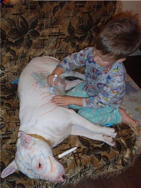 http://www.doodoo.ru/uploads/posts/2009-03/funnypics-091.jpg