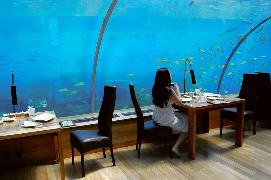 马尔代夫5米水下的海底餐厅