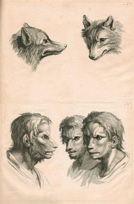 人与动物得对比 o 精妙的铅笔素描