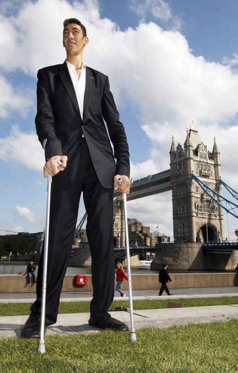 您知道现在全世界最高的人是谁吗