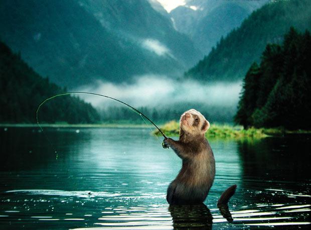 видео рыбалка на толстолоба снасти прикормки