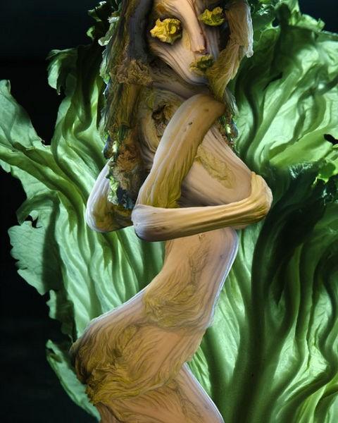 Картины из китайской капусты