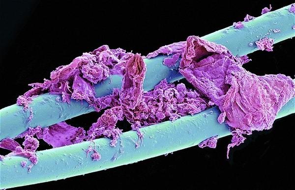 Вещи под микроскопом