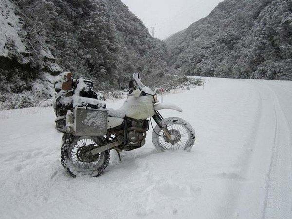 Расстрел в Новой Зеландии Pinterest: В Новой Зеландии идет снег » Дуделка