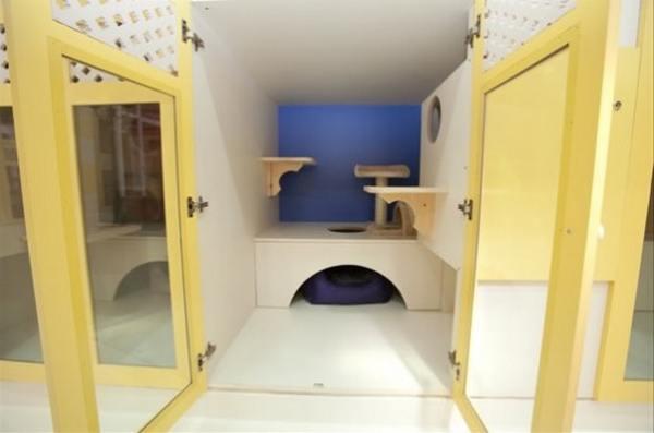 Отель люкс для домашних животных