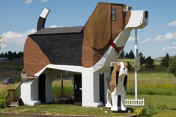 Отель-собака