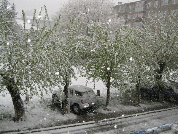 Снег в мае на Алтае