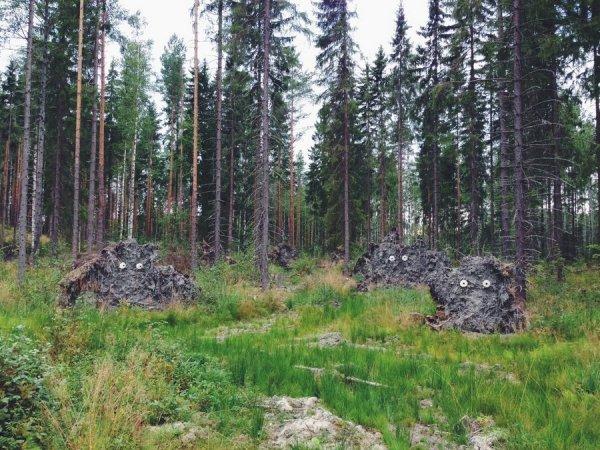 Чудовище из леса