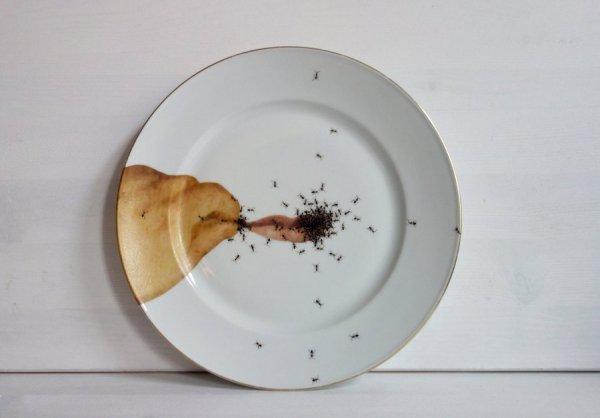 Тарелка с муравьями