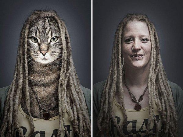 Кошки и хозяева