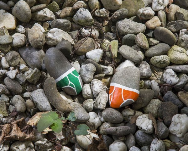 Камни в трусах