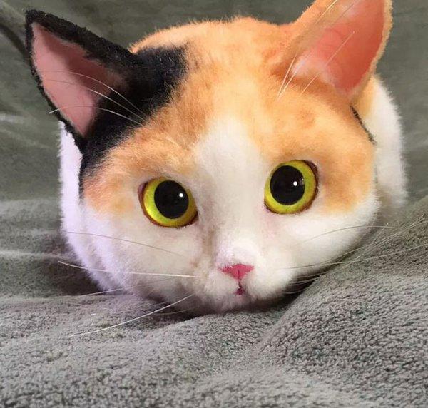 Кот-сумка