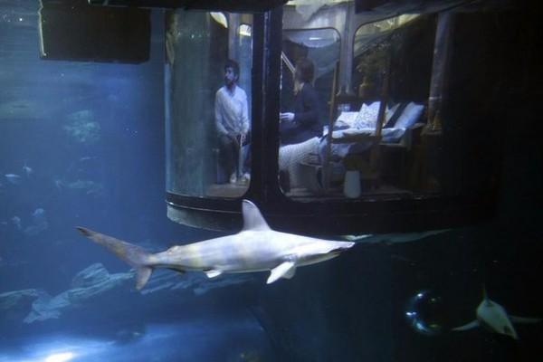 Подводная спальня