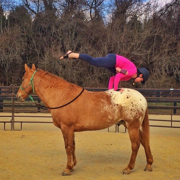 Йога на коне