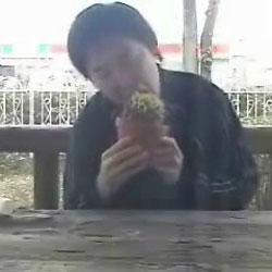 Поедание кактуса - Видеоприколы