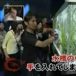 Фокус с аквариумом - Видеоприколы